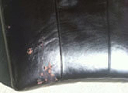 Auto Artisans Inc - Before and After - Retro Leather Finish - Before 1
